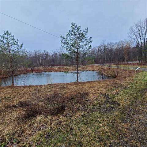 00 State Route 41A, Sempronius, NY 13118 (MLS #R1326978) :: Avant Realty