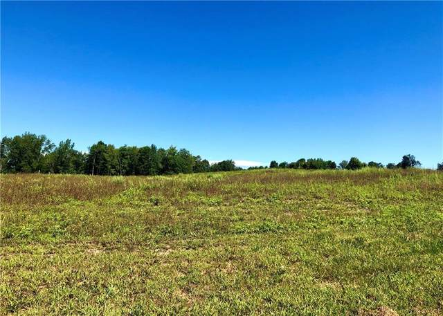 LOT 1 New Guinea Road, Clarendon, NY 14470 (MLS #R1328463) :: Robert PiazzaPalotto Sold Team