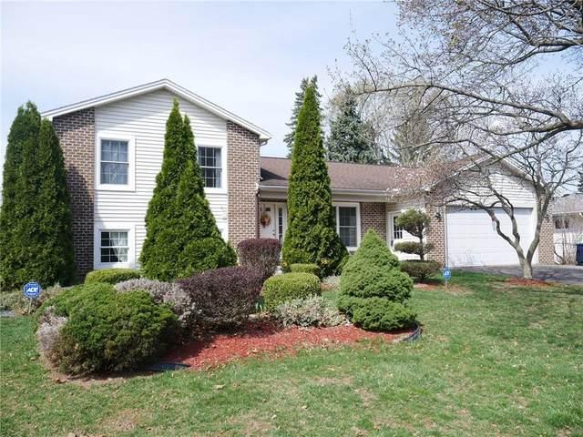 37 Appian Drive, Gates, NY 14606 (MLS #R1329121) :: TLC Real Estate LLC