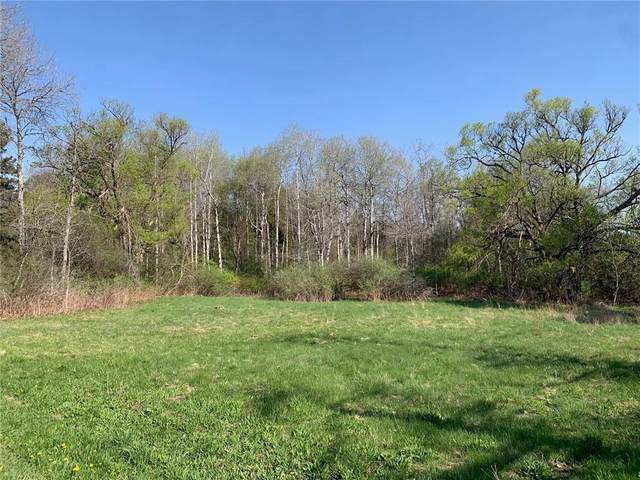 0 State Rte. 21 Road, Almond, NY 14804 (MLS #R1333101) :: Robert PiazzaPalotto Sold Team