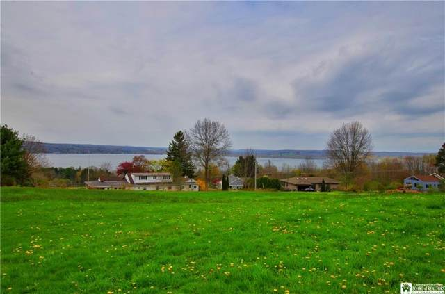 0A Driftwood Road, Ellery, NY 14712 (MLS #R1333611) :: 716 Realty Group