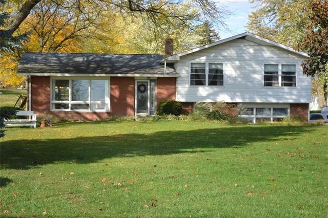 4660 State Route 89, Varick, NY 13148 (MLS #R1333974) :: Robert PiazzaPalotto Sold Team