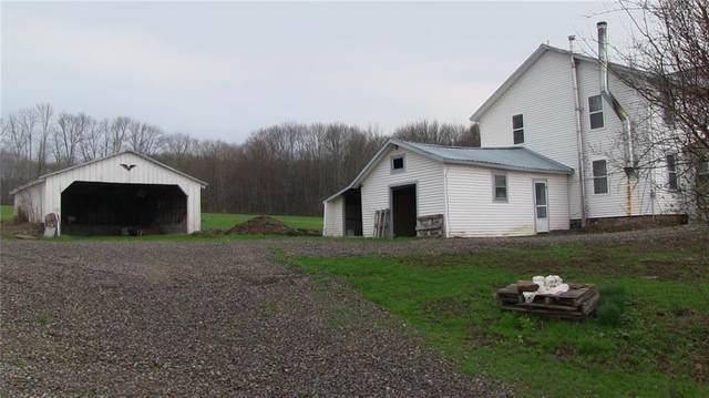 223 Corbin Road, Mc Donough, NY 13830 (MLS #R1334512) :: Lore Real Estate Services