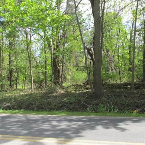 7982 Lake Rd., Sodus, NY 14555 (MLS #R1335197) :: TLC Real Estate LLC