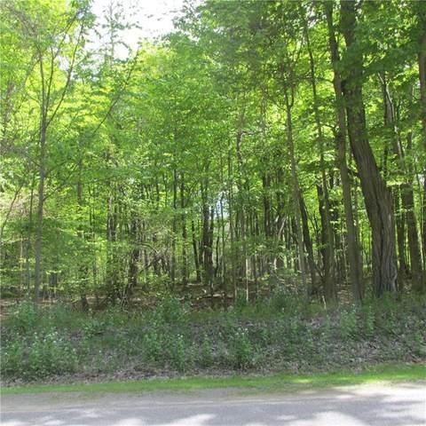 8000 Lake Rd., Sodus, NY 14555 (MLS #R1335198) :: TLC Real Estate LLC