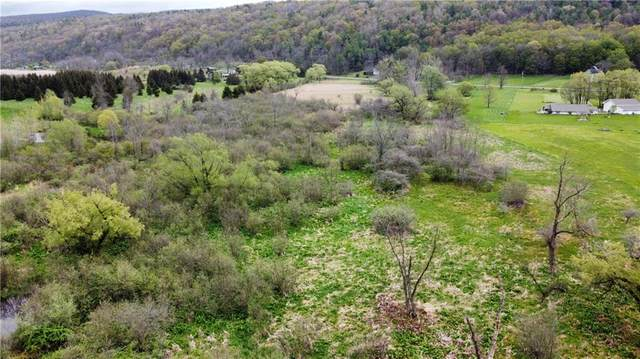 0 State Rout 64, Bristol, NY 14424 (MLS #R1335430) :: 716 Realty Group