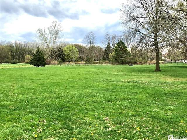 00 Berry Street S, Pomfret, NY 14063 (MLS #R1335579) :: BridgeView Real Estate Services