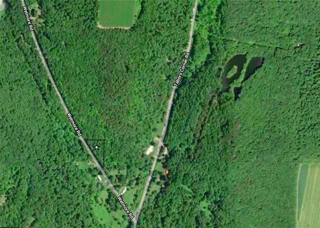 0 Wetmore Road, Springwater, NY 14560 (MLS #R1336925) :: Robert PiazzaPalotto Sold Team