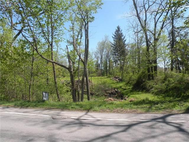 1305 & 1309 Lake Road, Webster, NY 14580 (MLS #R1339404) :: 716 Realty Group