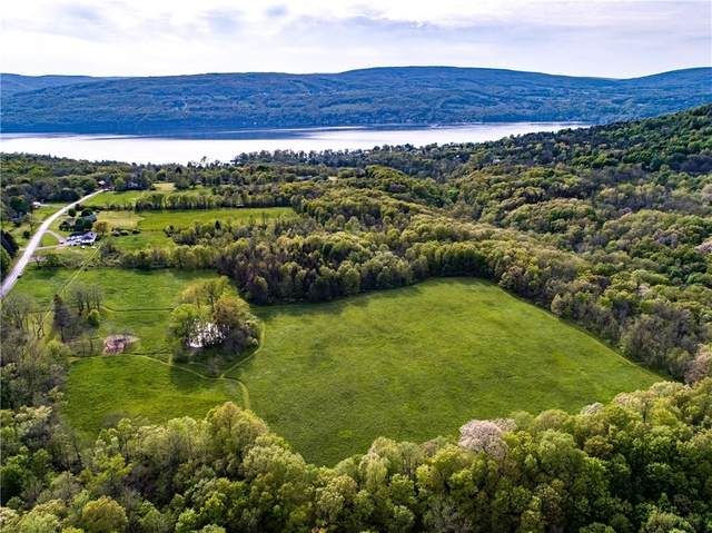 6130 S Vine Valley Road W, Middlesex, NY 14507 (MLS #R1339805) :: Robert PiazzaPalotto Sold Team