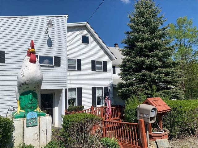 5249 State Route 21, Alfred, NY 14803 (MLS #R1340136) :: Robert PiazzaPalotto Sold Team