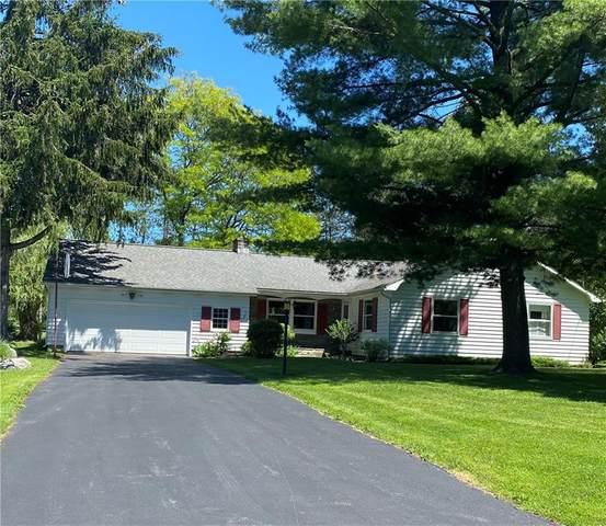 17 N Hurd Circle, Auburn, NY 13021 (MLS #R1343652) :: TLC Real Estate LLC