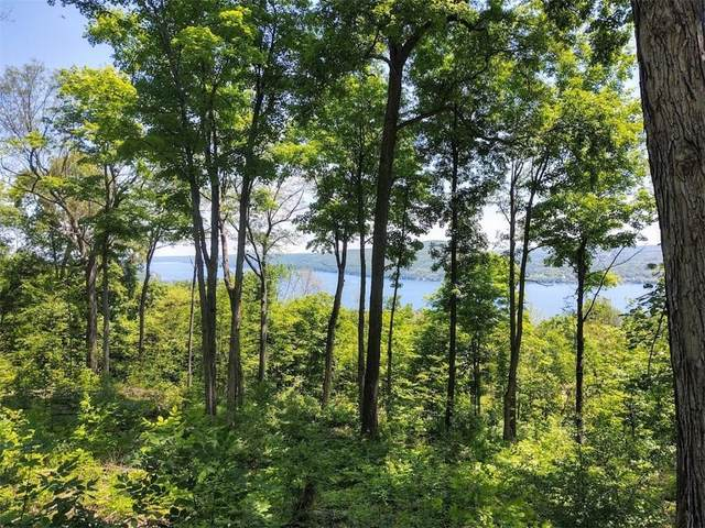 0 State Route 21 Road, South Bristol, NY 14512 (MLS #R1343886) :: TLC Real Estate LLC