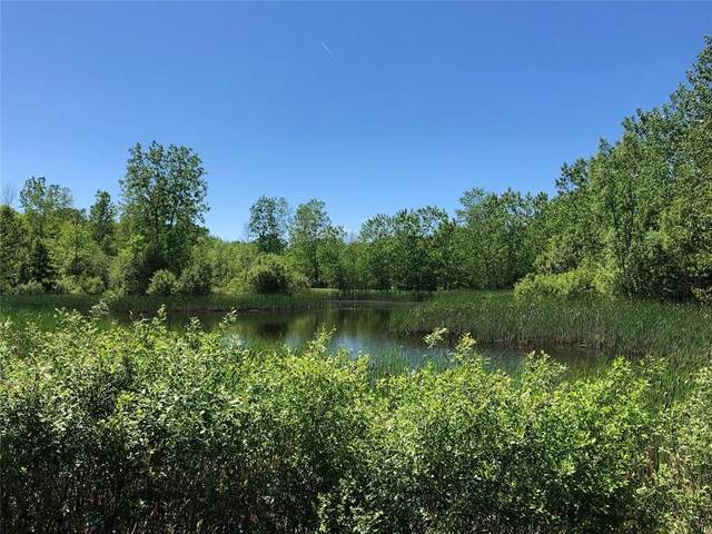 8438 W Somerset Road, Somerset, NY 14012 (MLS #R1344695) :: Lore Real Estate Services