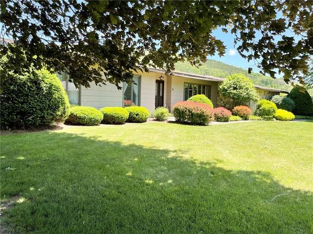 43 Chestnut Street, Canisteo, NY 14823 (MLS #R1345242) :: Robert PiazzaPalotto Sold Team