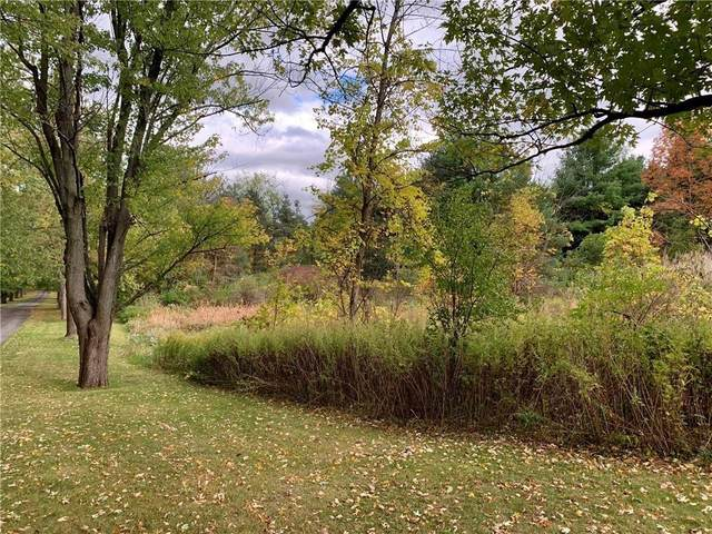Lot B County Rd 9, Victor, NY 14564 (MLS #R1345389) :: Lore Real Estate Services