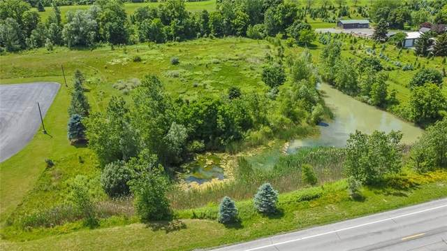 00 N Route 21 S, Palmyra, NY 14522 (MLS #R1345606) :: BridgeView Real Estate Services