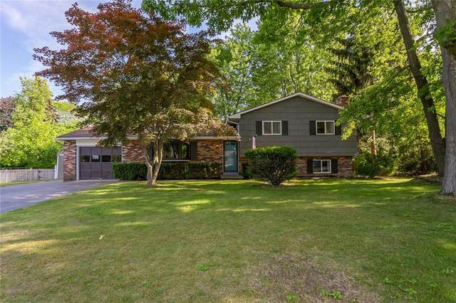 635 Blue Spruce Dr Drive, Webster, NY 14580 (MLS #R1345690) :: Robert PiazzaPalotto Sold Team