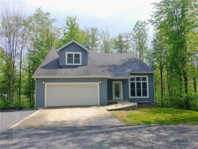 1730 State Route 414, Dix, NY 14891 (MLS #R1346047) :: BridgeView Real Estate
