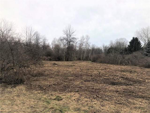 Lot 1 Jackson Road, Penfield, NY 14526 (MLS #R1346457) :: Lore Real Estate Services