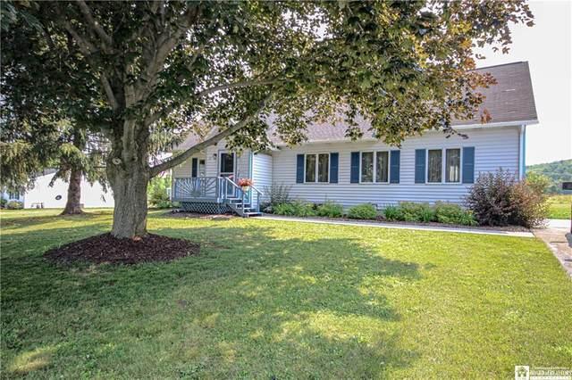 33 Nash Avenue, Carroll, NY 14738 (MLS #R1346736) :: Serota Real Estate LLC
