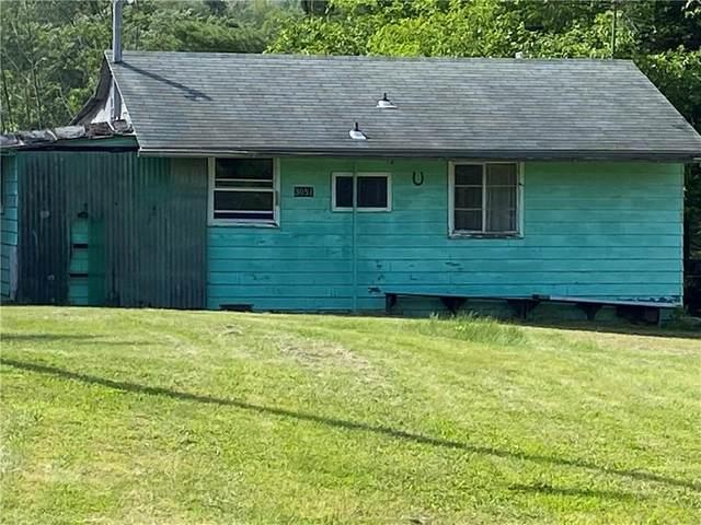 3051 Huggins Rd, Orange, NY 14815 (MLS #R1347796) :: Robert PiazzaPalotto Sold Team