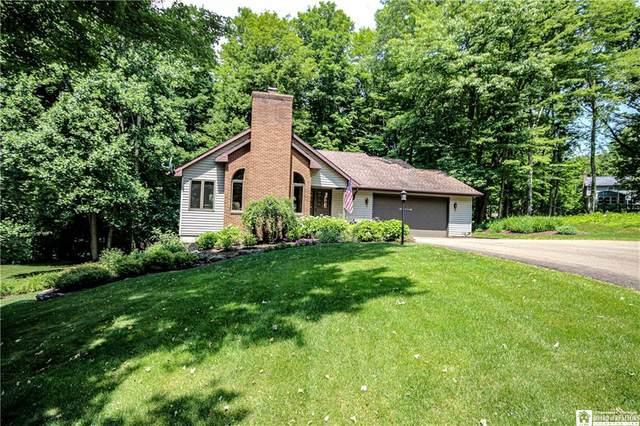 5484 Scandia Drive, Ellery, NY 14712 (MLS #R1348252) :: TLC Real Estate LLC