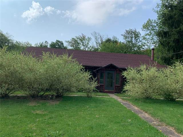 1331 State Route 244, Alfred, NY 14803 (MLS #R1348580) :: Robert PiazzaPalotto Sold Team
