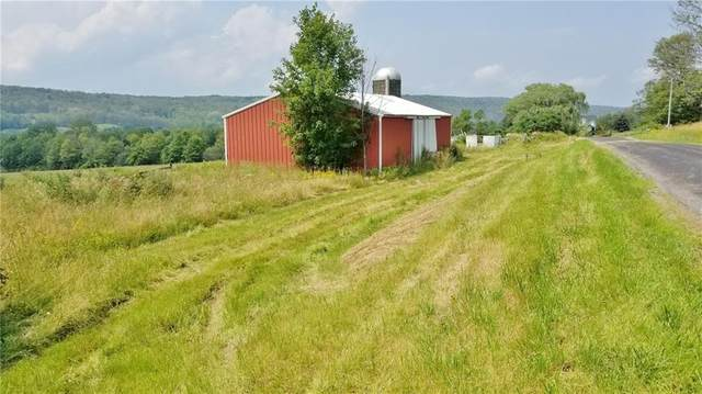 3790 Manning Road, Tyrone, NY 14891 (MLS #R1350141) :: BridgeView Real Estate