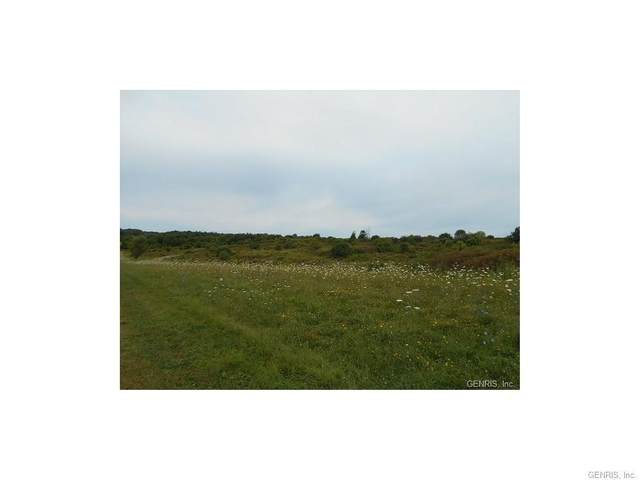 2040 Brace Rd, East Bloomfield, NY 14564 (MLS #R1351507) :: Serota Real Estate LLC