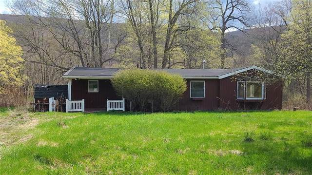 5903 State Route 64, South Bristol, NY 14424 (MLS #R1351658) :: Thousand Islands Realty
