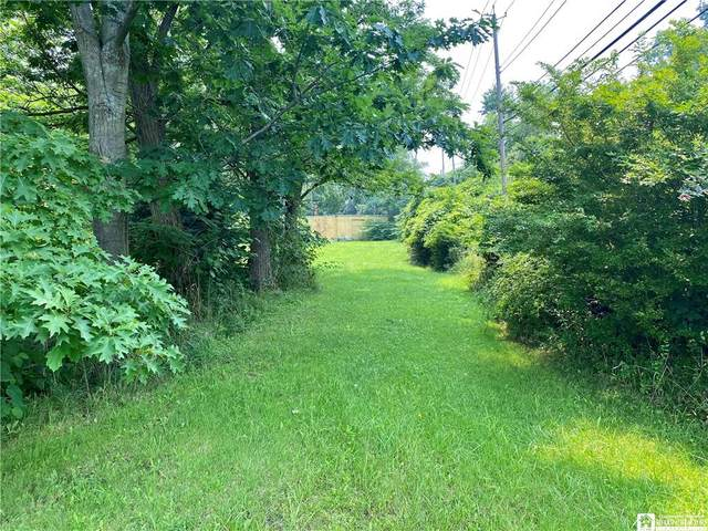 0 E Linwood Avenue, Ellicott, NY 14720 (MLS #R1351944) :: BridgeView Real Estate Services