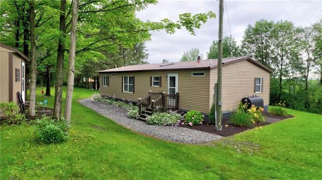 5254 Skinner Hill Road, Moravia, NY 13118 (MLS #R1352962) :: Robert PiazzaPalotto Sold Team
