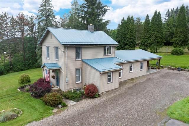 8217 Harrisburg Hollow Road, Wheeler, NY 14810 (MLS #R1352991) :: Serota Real Estate LLC