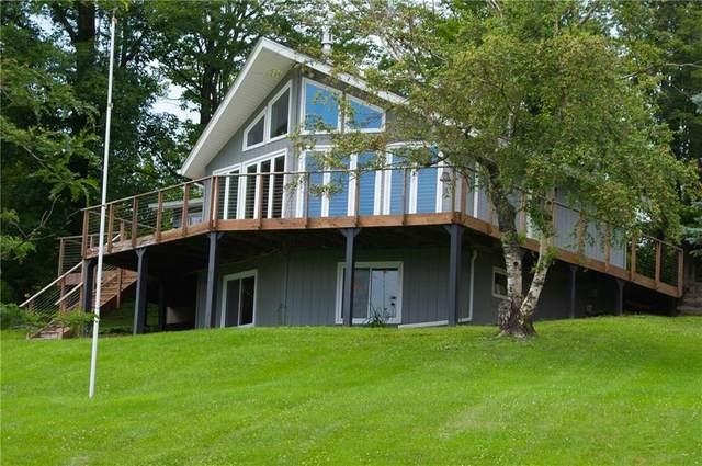 2425 Swain Hill Road, Grove, NY 14884 (MLS #R1353021) :: BridgeView Real Estate