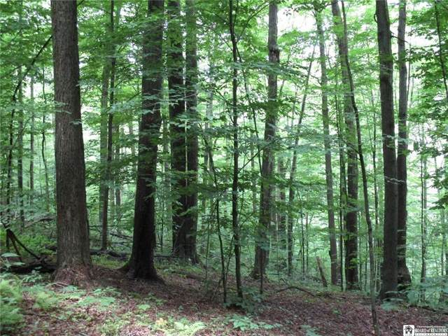 0 Four Mile Road, Allegany, NY 14706 (MLS #R1353498) :: 716 Realty Group