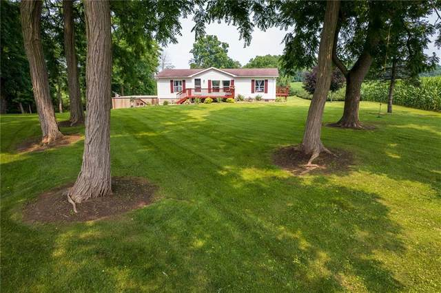 9653 State Route 90, Genoa, NY 13071 (MLS #R1353667) :: Robert PiazzaPalotto Sold Team
