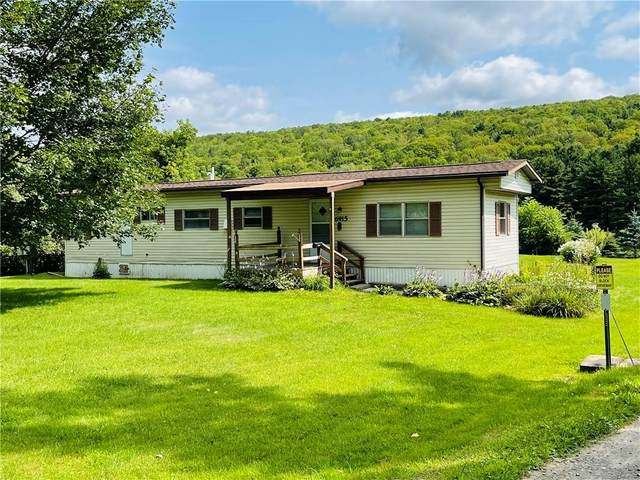 6915 Conesus Springwater Road, Conesus, NY 14435 (MLS #R1356608) :: Serota Real Estate LLC