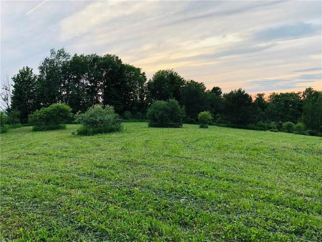 4659 Murphy Road, Tully, NY 13159 (MLS #R1356780) :: BridgeView Real Estate