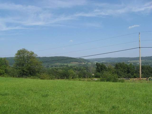 0 Lamoka Lake Road, Tyrone, NY 14815 (MLS #R1357796) :: BridgeView Real Estate