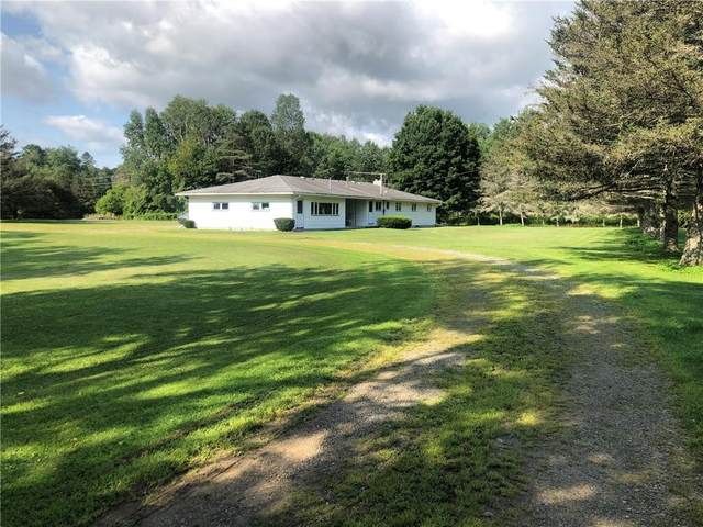 7967 State Route 19, Belfast, NY 14711 (MLS #R1358073) :: BridgeView Real Estate