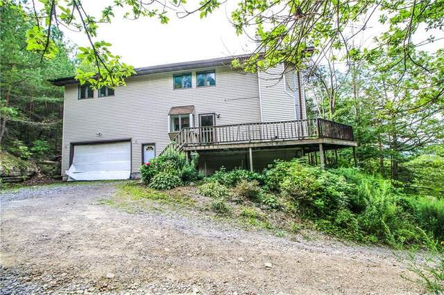 6595 State Route 15A, Canadice, NY 14560 (MLS #R1358193) :: Thousand Islands Realty