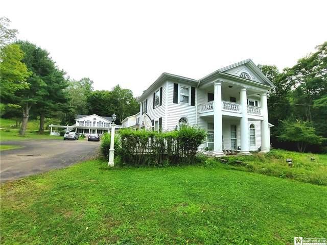 6645 S Portage Road, Westfield, NY 14787 (MLS #R1359344) :: BridgeView Real Estate