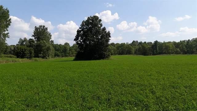 8841 Lyons Marengo Road, Galen, NY 14433 (MLS #R1359852) :: BridgeView Real Estate