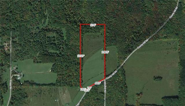0 County Hill Road, Angelica, NY 14709 (MLS #R1359867) :: Robert PiazzaPalotto Sold Team