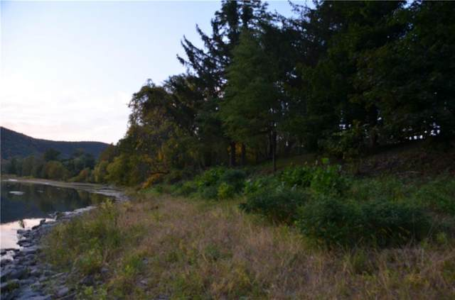 00 Maricle Lane, Big Flats, NY 14814 (MLS #R1359946) :: BridgeView Real Estate
