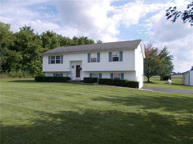 6686 Richmond Mills Road, Livonia, NY 14487 (MLS #R1361651) :: BridgeView Real Estate