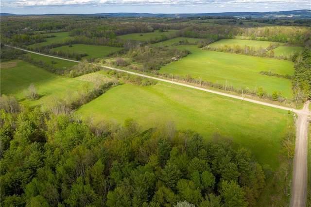 0 Ridge Rd, Wayne, NY 14840 (MLS #R1362544) :: Serota Real Estate LLC
