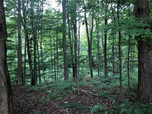 5585 Sayles Corners Rd, Moravia, NY 13118 (MLS #R1362862) :: TLC Real Estate LLC
