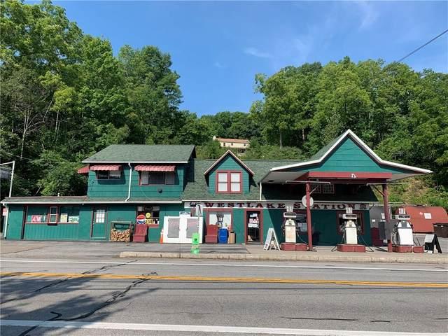 5390 W Lake Road, Geneseo, NY 14435 (MLS #R1363196) :: BridgeView Real Estate
